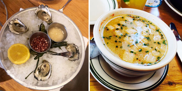 connie & ted's kumamoto oysters & rhode island clam chowder